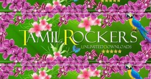 List Of 2019 Bollywood Movies Leaked By Tamilrockers